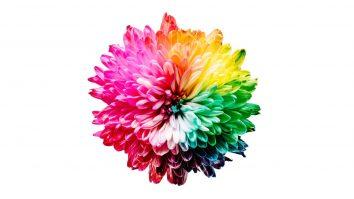 Arti Warna Dalam Psikologi