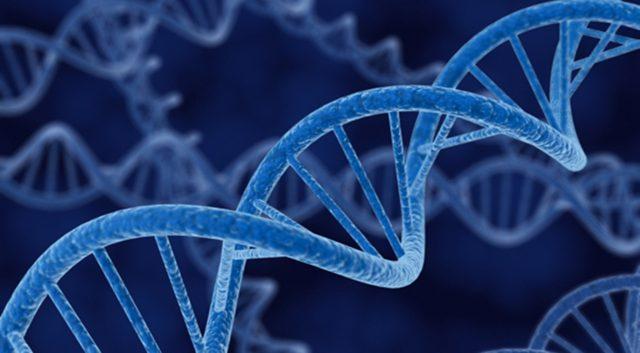 Faktor Genetik Pada Adhd