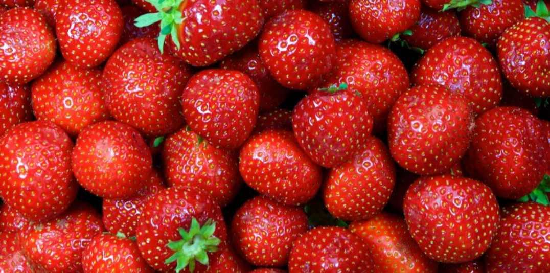 Manfaat Strawberry Untuk Kesehatan Rambut