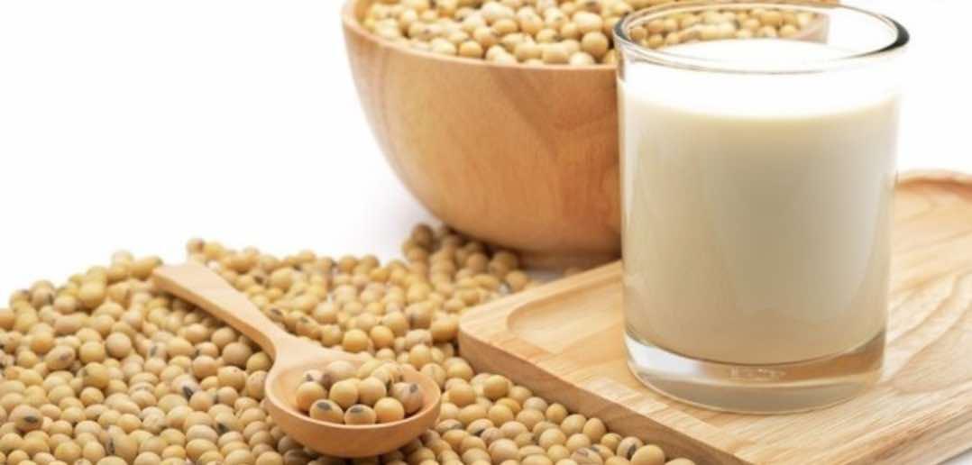 Susu Kacang Kedelai