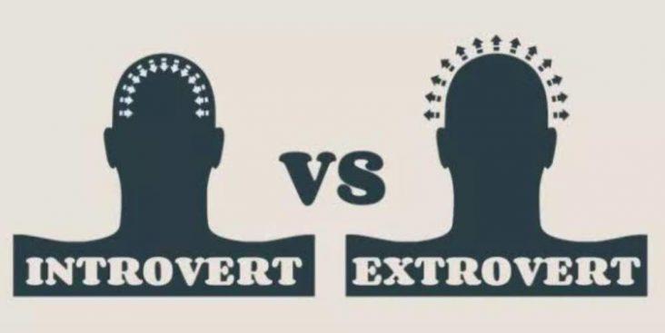 Penggolongan Introvert dan Ekstrovert