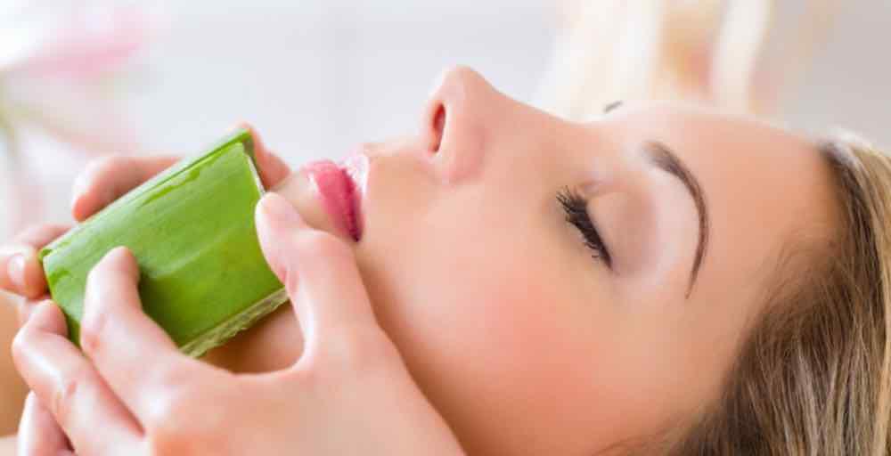 Manfaat Aloe Vera Untuk Kecantikan