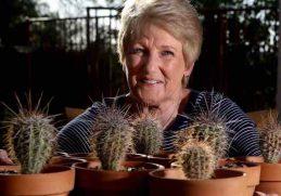 Manfaat Kaktus Untuk Kecantikan