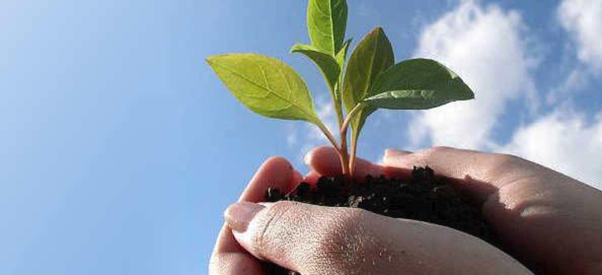 Ebook Lebih Ramah Lingkungan