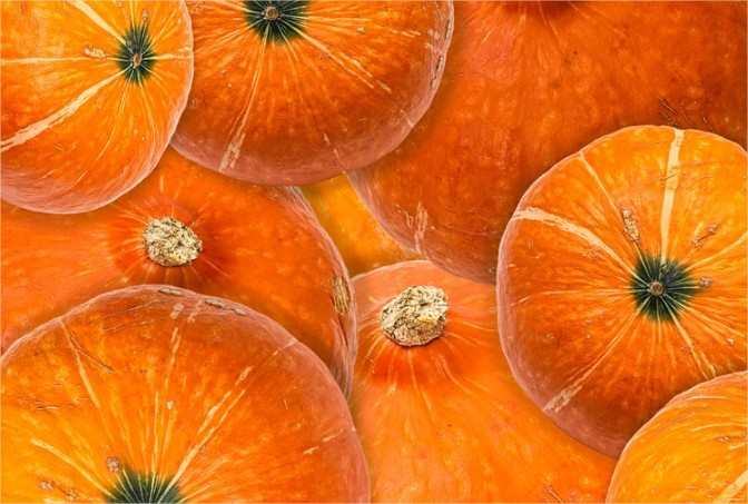 Psikologi Warna Oranye Pada Desain Logo